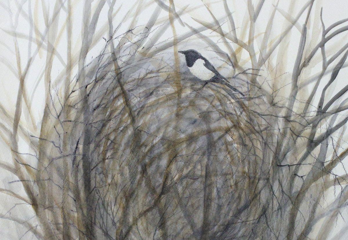 Näyttely: Asta Moro: POLUN VARRELTA  Akvarellimaalauksia