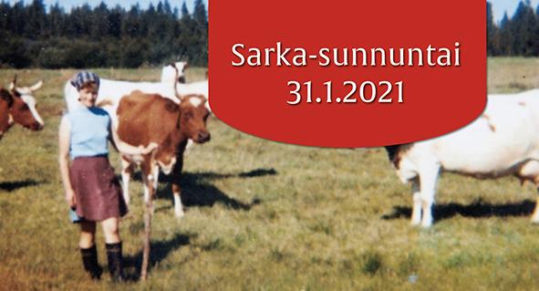 Tapahtuma: Sarka-sunnuntai: Lapsia, lehmiä ja läskisoosia